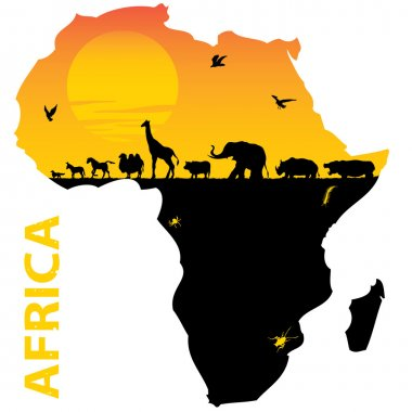 Vector illustration for the animals of Africa stock vector