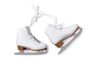 Ice-skating shouse