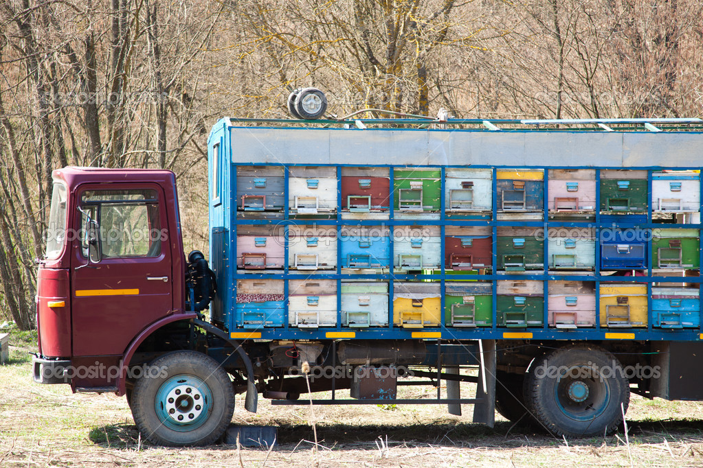 Truck with beehives