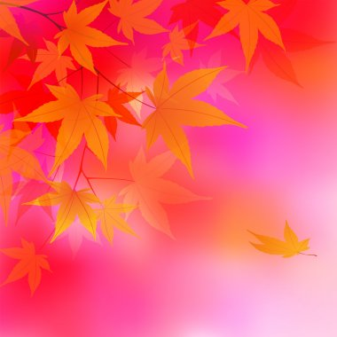 Autumn leaves background. vector illustration clip art vector