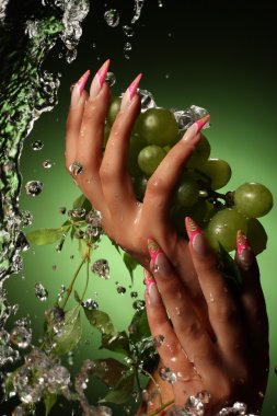 Hands of a young woman with a nice manicure.Оn a green background with grapes. stock vector