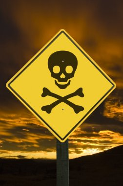 Yellow traffic sign with skull and crossbones. stock vector