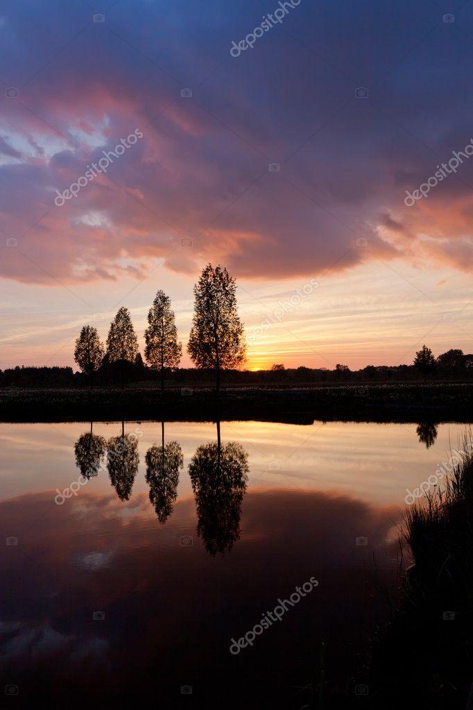Фотообои Leafless tree near lake on sunset background sky
