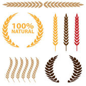 Photo Wheat Icon Set