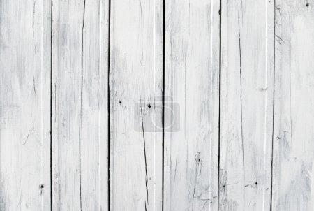 Photo pour Un fond de bois peint en blanc altéré - image libre de droit