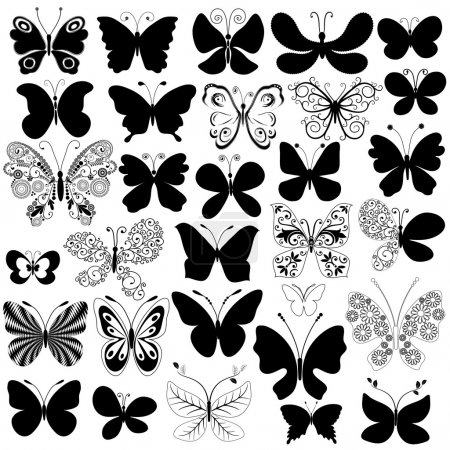 Big collection black butterflies