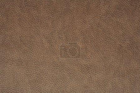 Photo pour Texture de cuir marron - image libre de droit