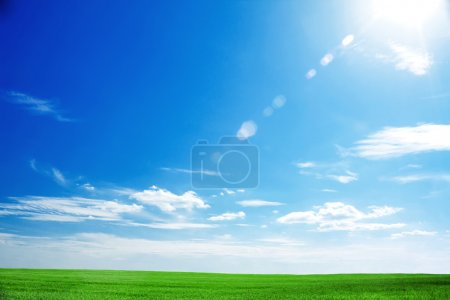 Photo for Field of fresh green grass and bright blue sky with the sun causing lens flare - Royalty Free Image