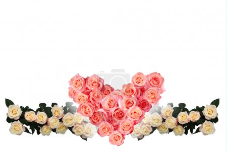 Heart of roses on a background of roses