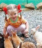 Happy girl feed group rabbit.