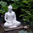 Statue of Buddha on wooden platform in pool surrou...