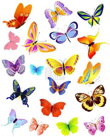 Illustration pour Ensemble de papillons différents - image libre de droit