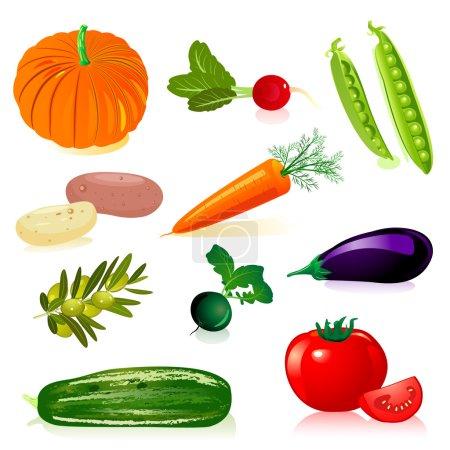 Illustration pour Set légumes - image libre de droit