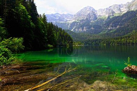Photo pour Belle vue sur le lac tovel sur les Alpes italiennes - image libre de droit