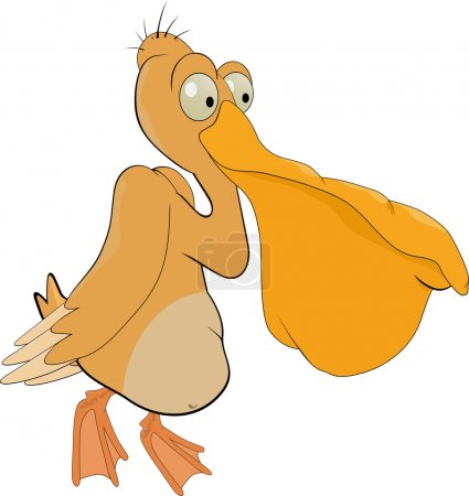Cheerful pelican