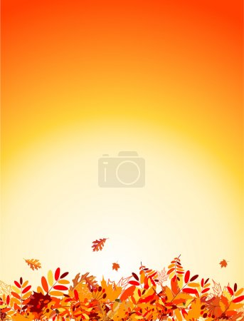 Illustration for Autumn leaves background for your design - Royalty Free Image
