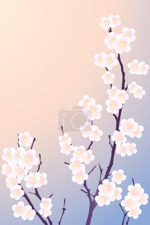 Illustration pour Une branche d'arbre avec des fleurs printanières en fond rose et bleu . - image libre de droit