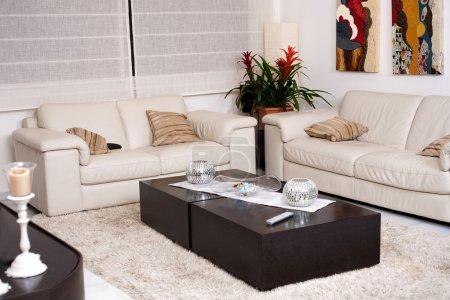 Photo pour Salon moderne avec un mobilier moderne - image libre de droit