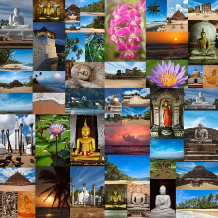Photo for Collage of images of Sri Lanka - Royalty Free Image