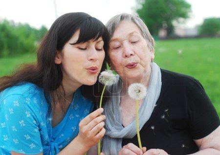 Photo pour Heureuse grand-mère et petite-fille avec pissenlits sur le pré - image libre de droit