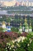 Kyiv Botanic Garden in spring