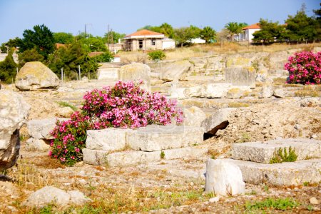 Photo for Archaeological Dig Site at the Apollo Temple, Corinth, Greece. - Royalty Free Image