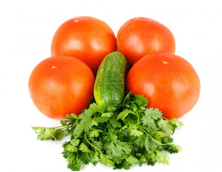Photo for Tomato and cucumber with green coriandr - Royalty Free Image