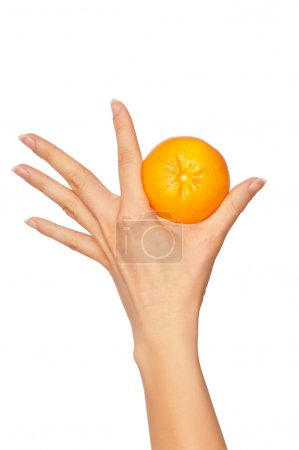 Photo for Woman holding yellow sweet fruit mandarin in the hand - Royalty Free Image