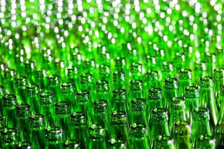 Photo pour Bouquet de bouteilles en verre vert. Concentration douce . - image libre de droit