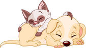 Cute Puppy and adorable kitten are sleeping