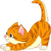 Cute red hair Cat stretching