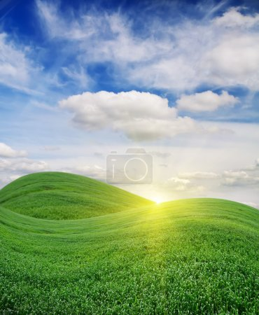 Photo for The morning sun rising over a beautiful green field - Royalty Free Image