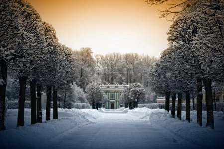 Beautiful winter in Estate Kuskovo, Moscow, Russia...