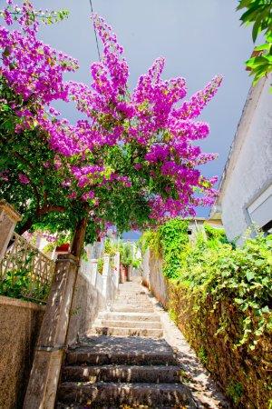Street of Herceg Novi