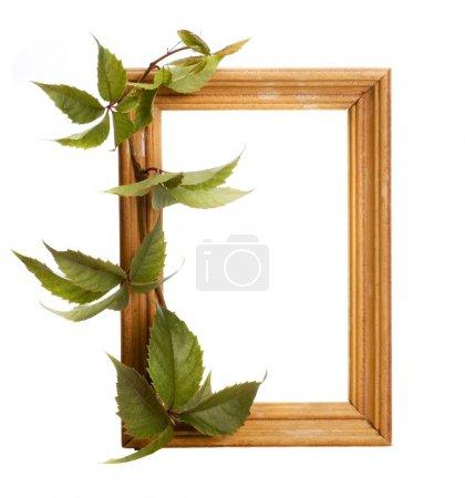 Photo pour Cadre photo en bois - image libre de droit