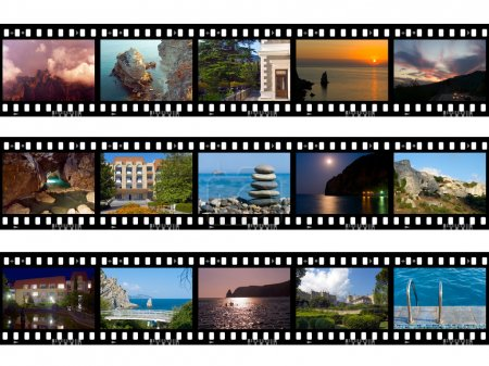 frames of film nature and travel