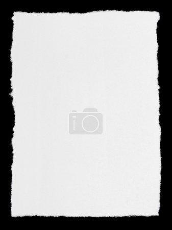 Foto de Kaşıkla kahve tohum beyaz zemin üzerine izole - Imagen libre de derechos