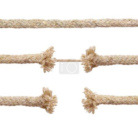 Photo pour Ensemble de cordes isolées sur fond blanc - image libre de droit