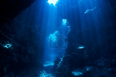 Photo for Underwater landscape. cave in the coral reef lit sun rays. - Royalty Free Image