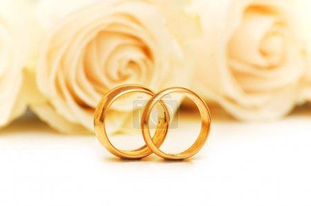 Foto de Rosas y anillos de boda aislados en el blanco - Imagen libre de derechos