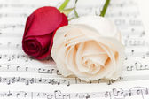 White and red roses on musical notes