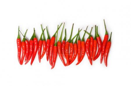 rote Chilischoten isoliert auf der weißen