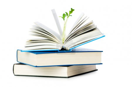 Photo for Knowledge concept with books and seedlings - Royalty Free Image