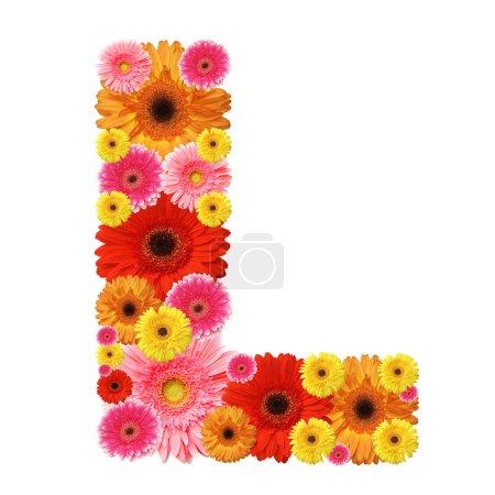 Photo pour L, alphabet floral isolé sur blanc - image libre de droit