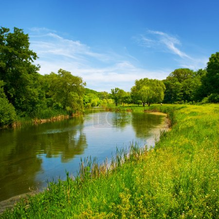 Photo for Summer landscape with river and blue sky - Royalty Free Image