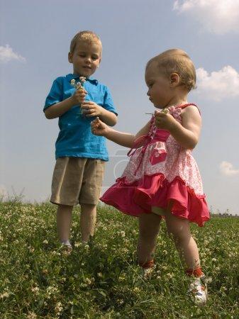 Children on meadow