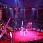 Circus acrobats...
