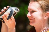 Baby sea turtle