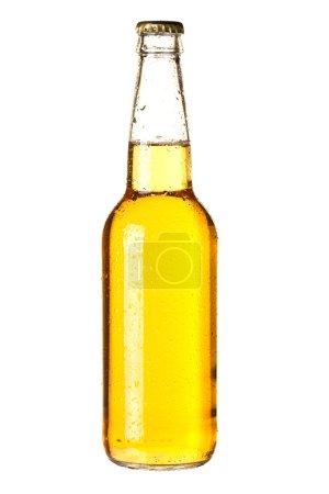 Lager beer in bottle