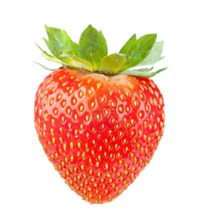 Photo for Fresh strawberry. Isolated on white background - Royalty Free Image